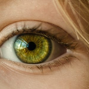 13 октомври – Световен ден на зрението