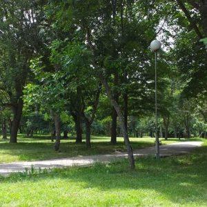 "50 доброволци почистиха алеята и парк ""Бачиново"""
