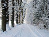 Климатолог разкри каква зима ни очаква